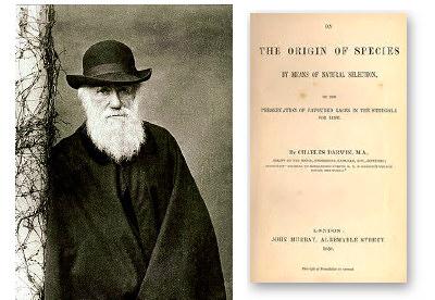 An analysis of charles darwins the origin of species